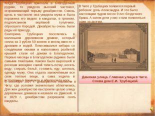 Когда Трубецкая приехала в Благодатный рудник, то увидела высокий частокол, о