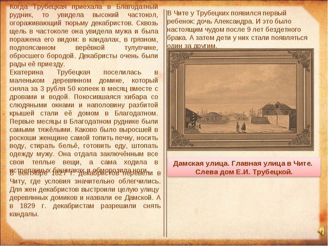 Когда Трубецкая приехала в Благодатный рудник, то увидела высокий частокол, о...