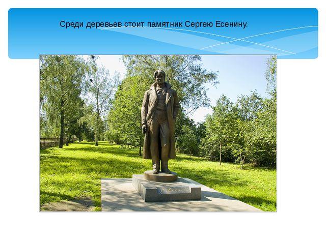 Среди деревьев стоит памятник Сергею Есенину.