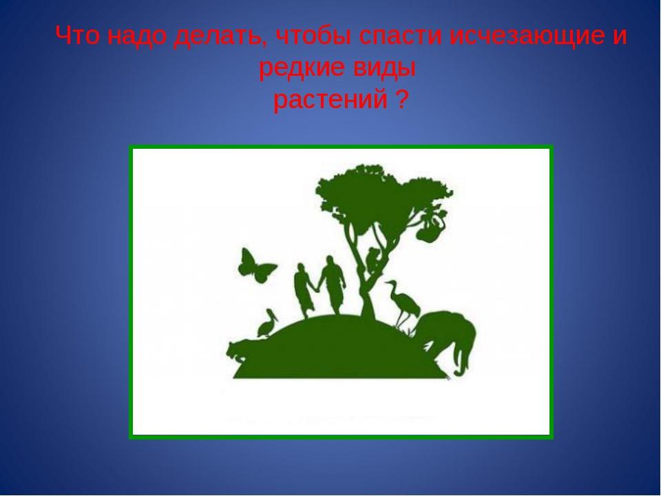 Что надо делать, чтобы спасти исчезающие и редкие виды растений ?