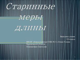 * Выполнил ученик 5 б класса МКОУ «Новоусманская СОШ № 3 с.Новая Усмань Ворон