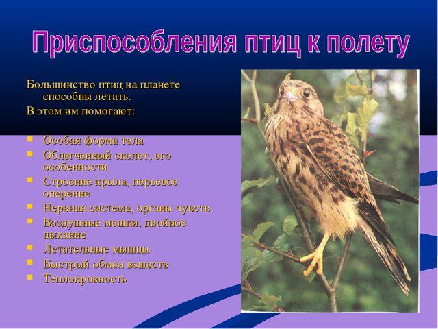 Большинство птиц на планете способны летать. В этом им помогают: Особая форма...