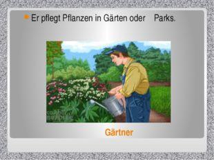 Gärtner Er pflegt Pflanzen in Gärten oder Parks.
