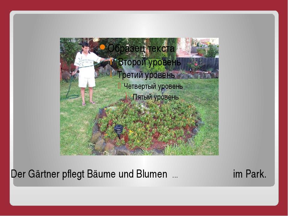 Der Gärtner pflegt Bäume und Blumen … im Park.