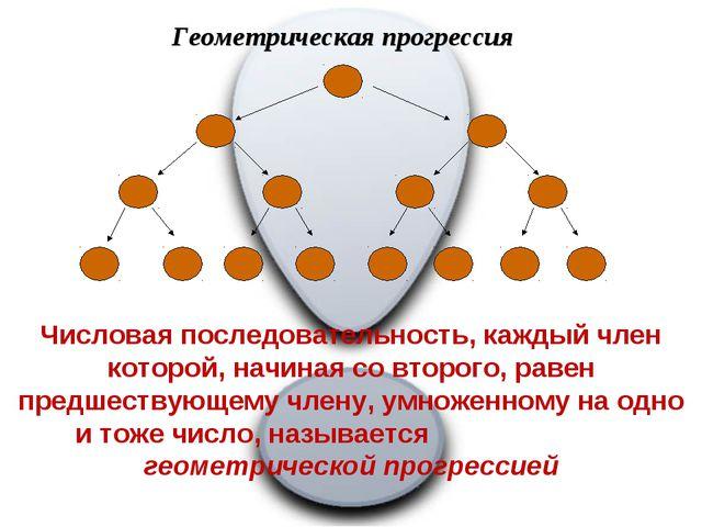 Геометрическая прогрессия Числовая последовательность, каждый член которой, н...
