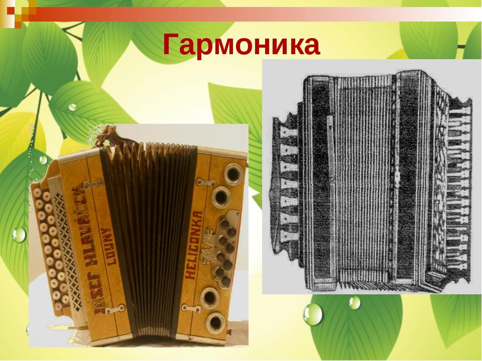 Гармоника