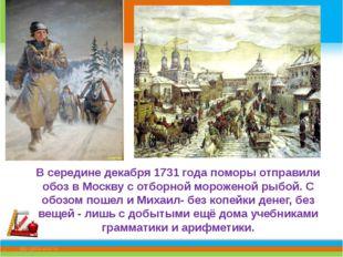 В середине декабря 1731 года поморы отправили обоз в Москву с отборной морож