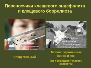 Переносчики клещевого энцефалита и клещевого боррелиоза Клещ таёжный Молоко з