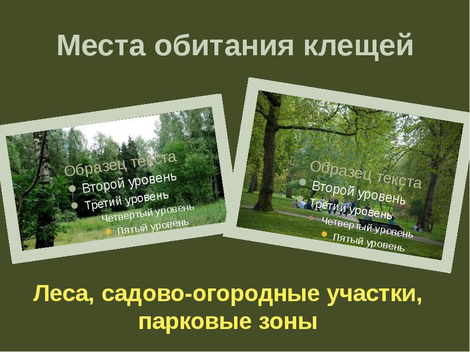 Места обитания клещей Леса, садово-огородные участки, парковые зоны