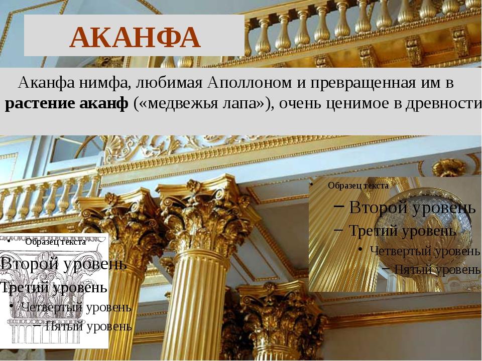 АКАНФА Аканфа нимфа, любимая Аполлоном и превращенная им в растение аканф («м...