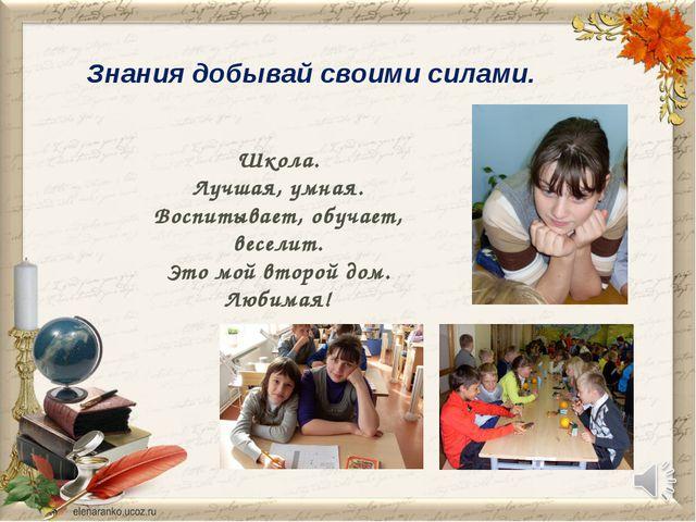 Знания добывай своими силами. Школа. Лучшая, умная. Воспитывает, обучает, вес...
