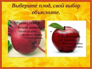 Выберите плод, свой выбор объясните.