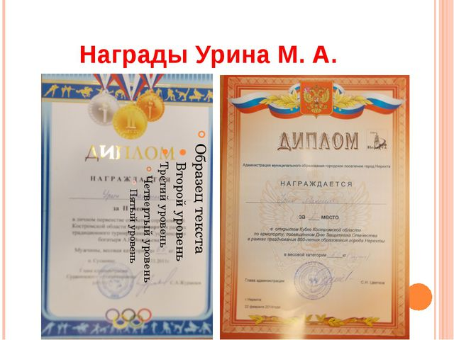 Награды Урина М. А.