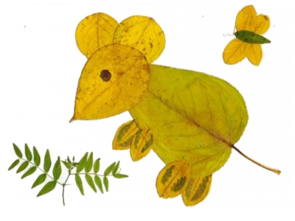 Как сделать мышку из листьев своими руками