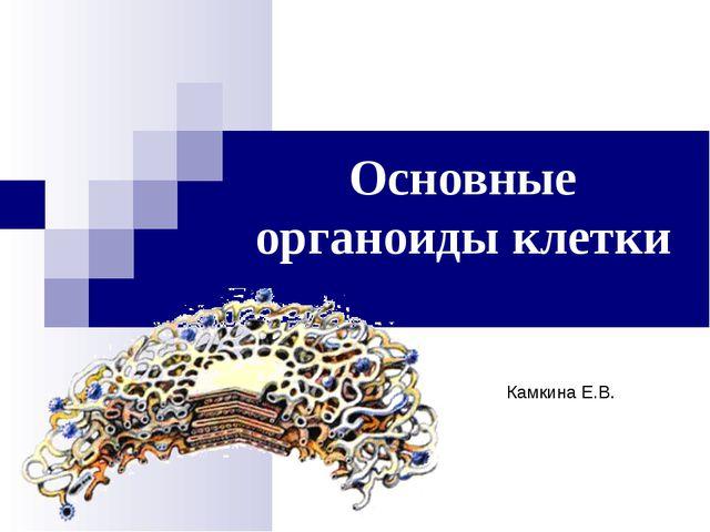 Основные органоиды клетки Камкина Е.В.