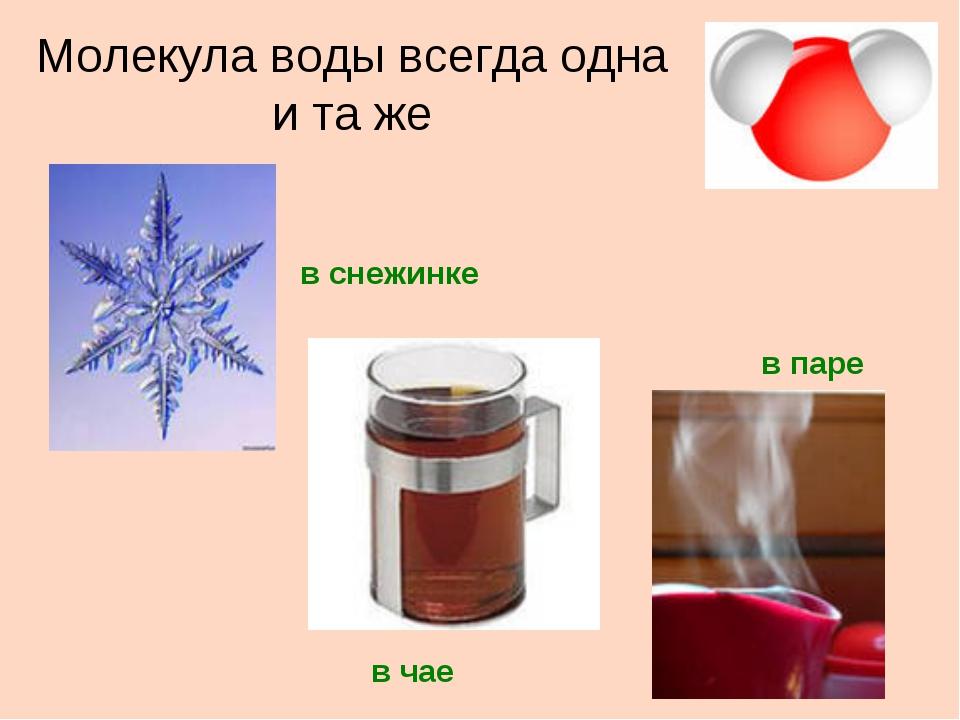 Молекула воды всегда одна и та же в снежинке в паре в чае