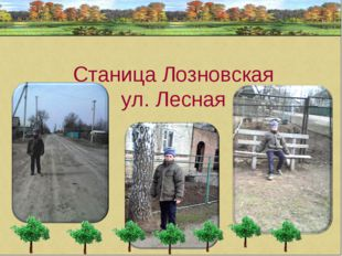 Станица Лозновская ул. Лесная