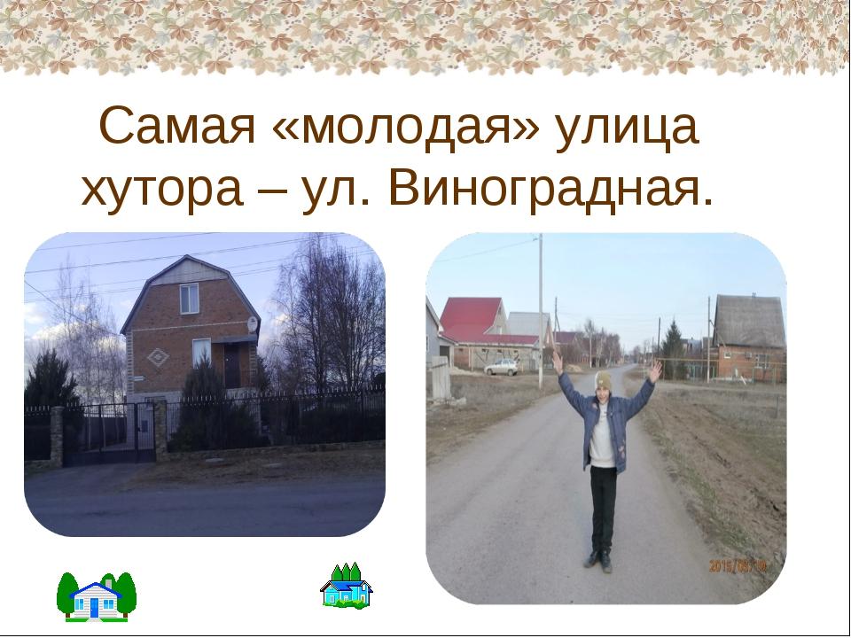 Самая «молодая» улица хутора – ул. Виноградная.