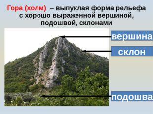 Гора (холм) – выпуклая форма рельефа с хорошо выраженной вершиной, подошвой,