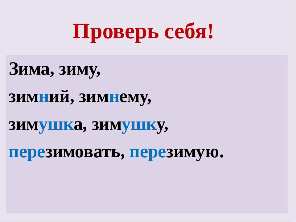 Проверь себя! Зима, зиму, зимний, зимнему, зимушка, зимушку, перезимовать, пе...