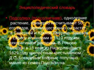 Энциклопедический словарь Подсолнух (подсолнечник), однолетние растение, прим