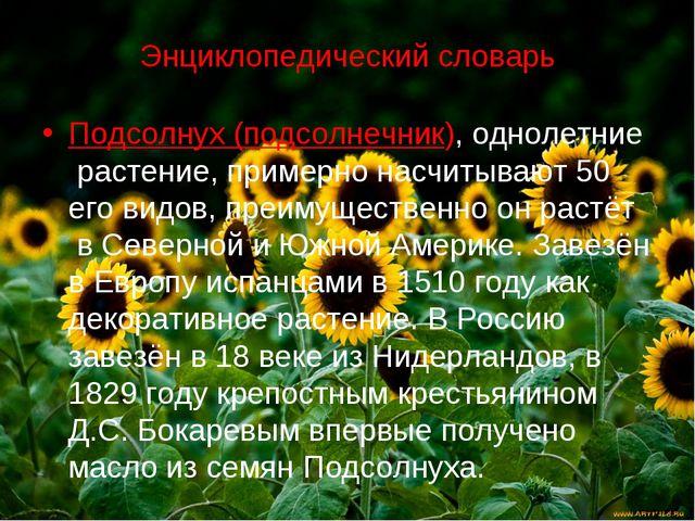 Энциклопедический словарь Подсолнух (подсолнечник), однолетние растение, прим...