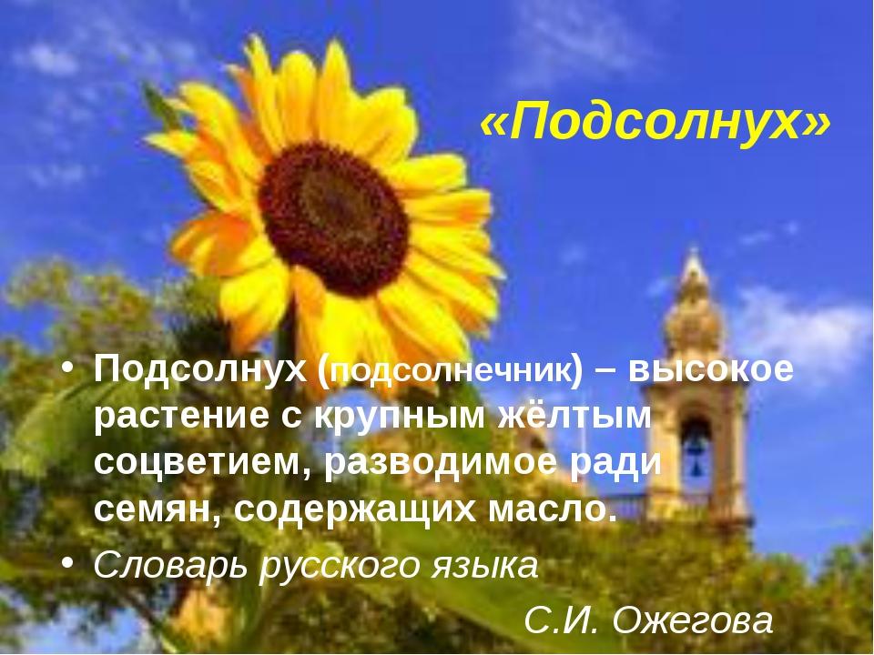 «Подсолнух» Подсолнух (подсолнечник) – высокое растение с крупным жёлтым соцв...