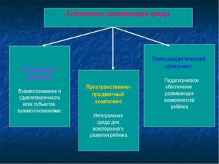 Компоненты развивающей среды Социальный компонент Взаимопонимание и удовлетв