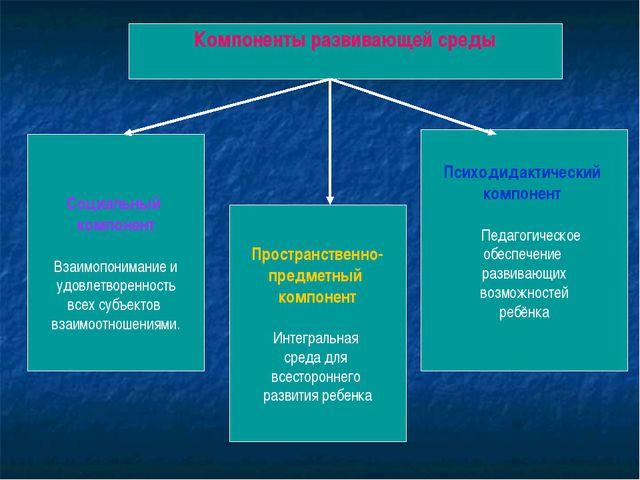 Компоненты развивающей среды Социальный компонент Взаимопонимание и удовлетв...