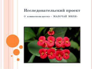 Исследовательский проект О комнатном цветке « МАЛОЧАЙ МИЛЯ»