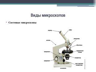 Виды микроскопов Световые микроскопы