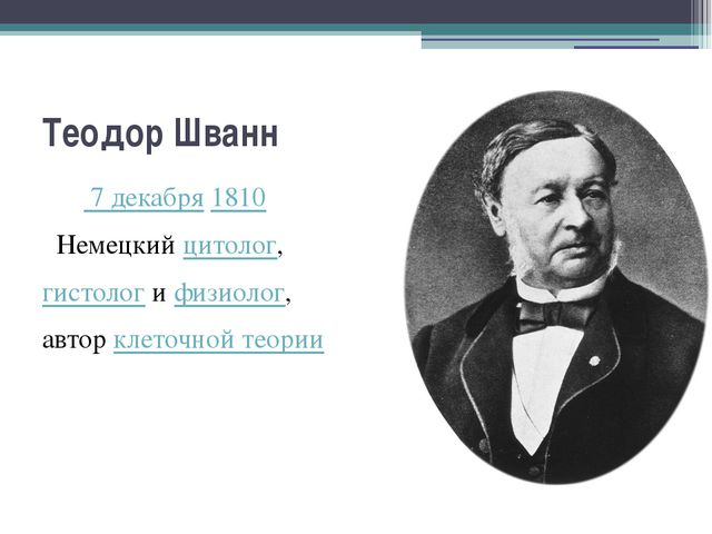 Теодор Шванн  7 декабря1810 Немецкийцитолог, гистологифизиолог, авторк...