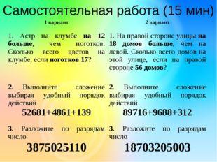 Самостоятельная работа (15 мин) 1 вариант 2 вариант 1. Астр на клумбена 12 бо