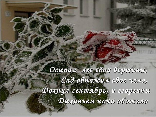 Осыпал лес свои вершины, Сад обнажил свое чело, Дохнул сентябрь, и георгины Д...