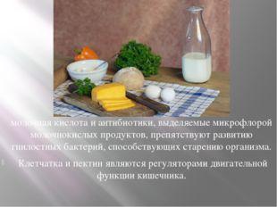 молочная кислота и антибиотики, выделяемые микрофлорой молочнокислых продукто