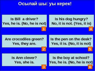 Осылай шығуы керек! Is Bill a driver? Yes, he is. (No, he is not) Are crocodi