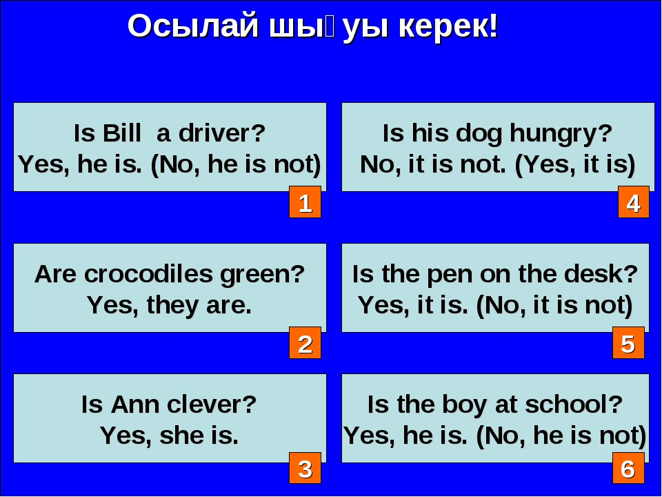 Осылай шығуы керек! Is Bill a driver? Yes, he is. (No, he is not) Are crocodi...
