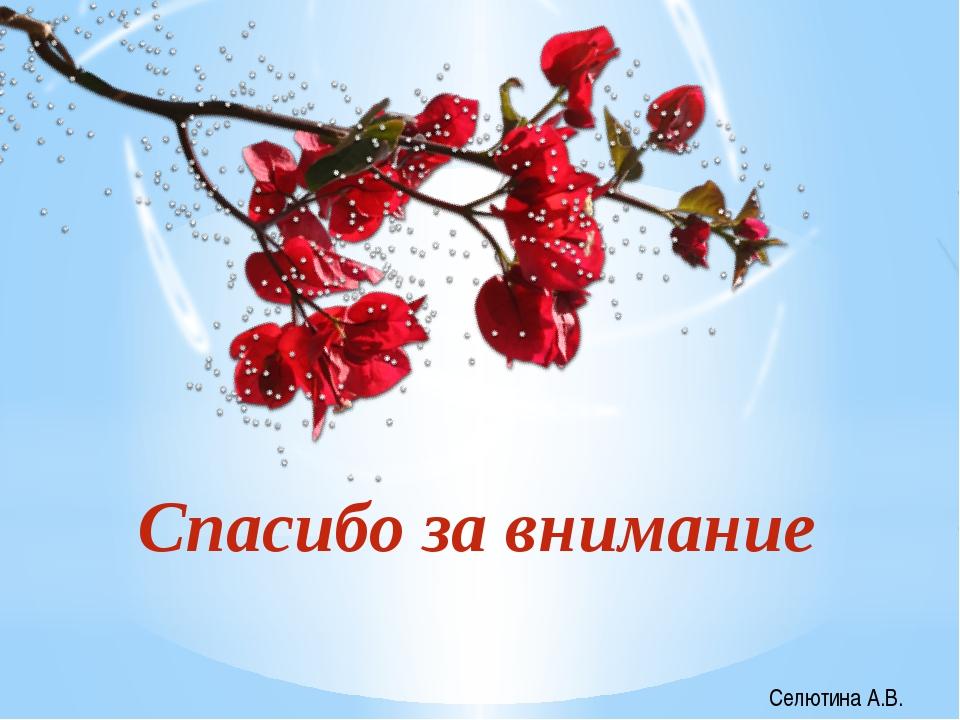 Спасибо за внимание Селютина А.В.
