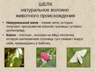 Натуральный шелк - тонкие нити, которые получают при размотке коконов гусениц