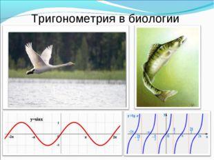 Тригонометрия в биологии