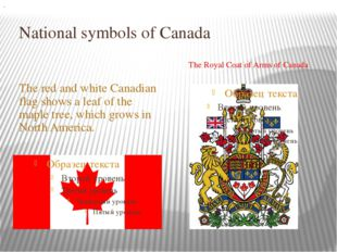 National symbols of Canada The red and white Canadian flag shows a leaf of th