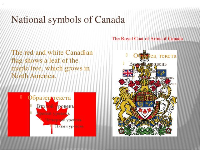 National symbols of Canada The red and white Canadian flag shows a leaf of th...