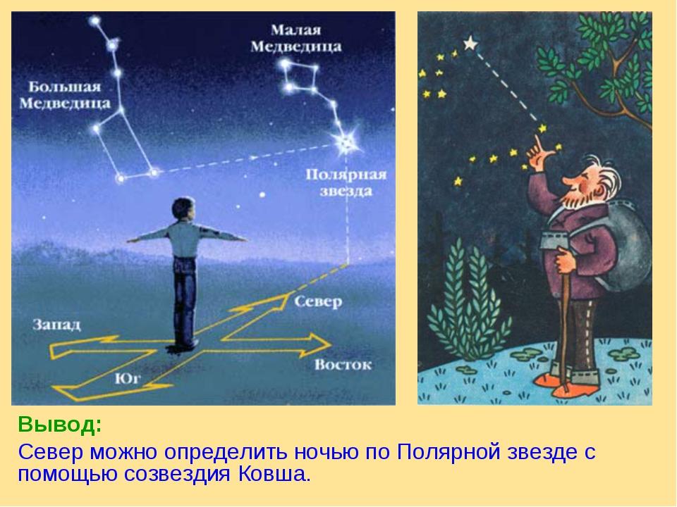 Вывод: Север можно определить ночью по Полярной звезде с помощью созвездия Ко...