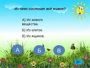 Что НЕ относится к телам живой природы? А) растения Б) дождь В) животные Г) ч