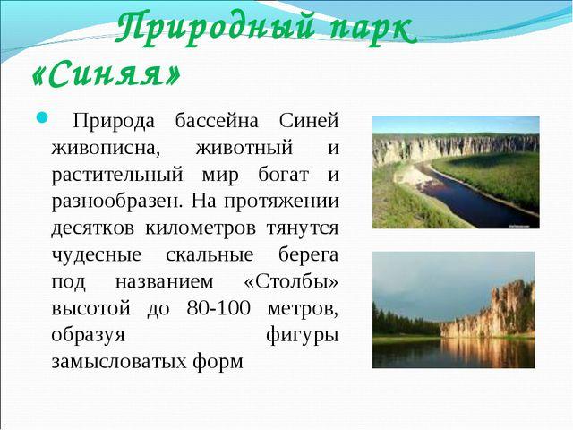 Природный парк «Синяя» Природа бассейна Синей живописна, животный и растител...