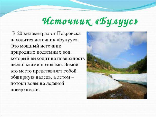 Источник «Булуус» В 20 километрах от Покровска находится источник «Булуус»....