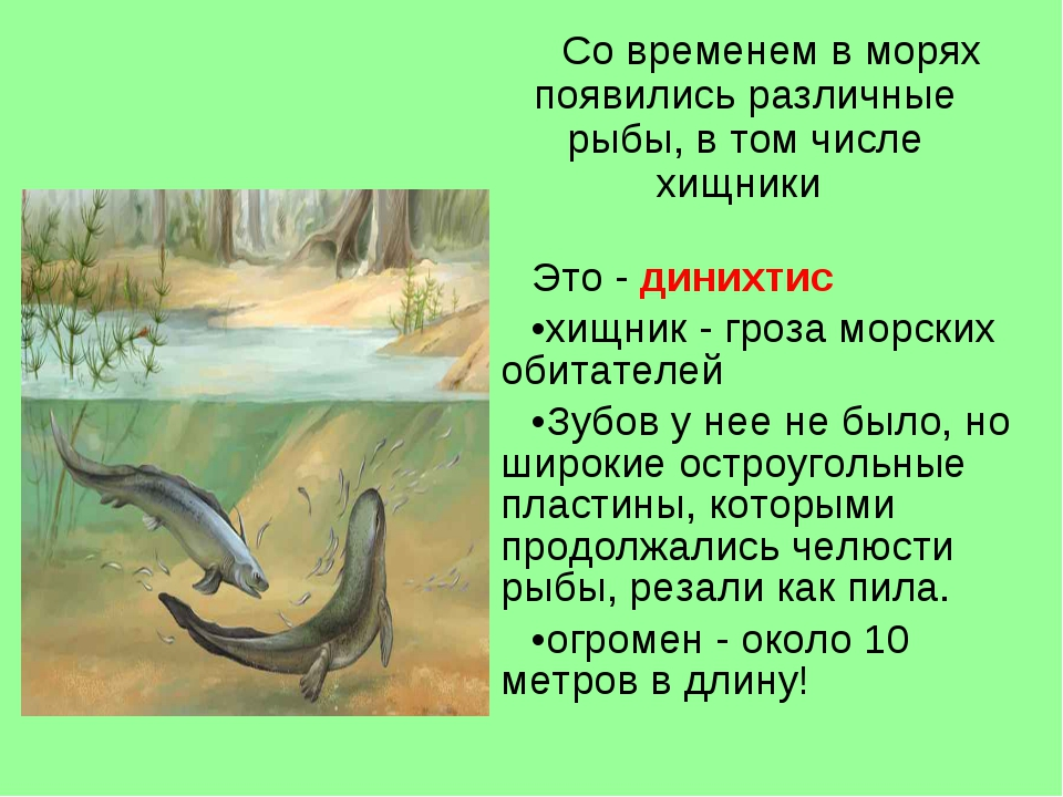Это - динихтис хищник - гроза морских обитателей Зубов у нее не было, но широ...