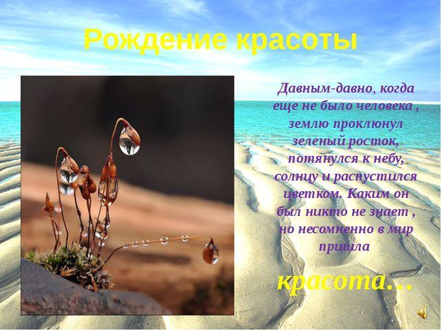 Рождение красоты Давным-давно, когда еще не было человека , землю проклюнул з...