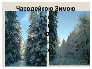 Чародейкою Зимою Околдован, лес стоит – И под снежной бахромою, Неподвижною,