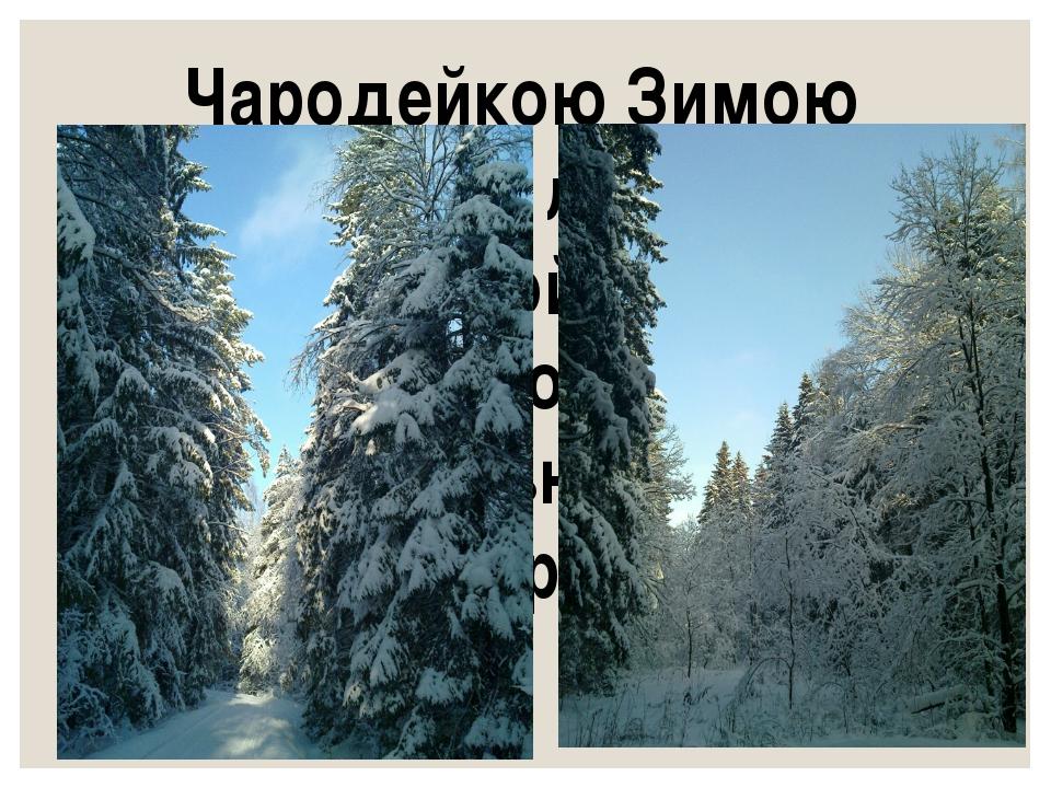 Чародейкою Зимою Околдован, лес стоит – И под снежной бахромою, Неподвижною,...